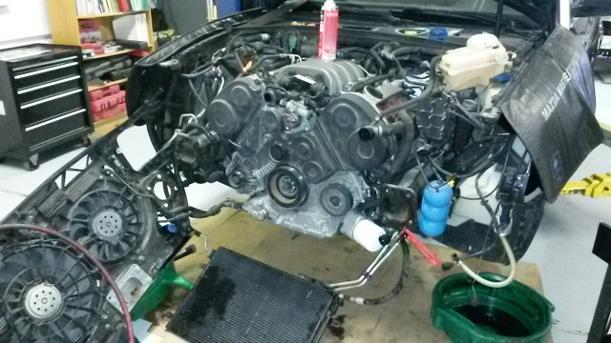 05 AUDI A4 Timing Belt Job Have You done Your's Yet